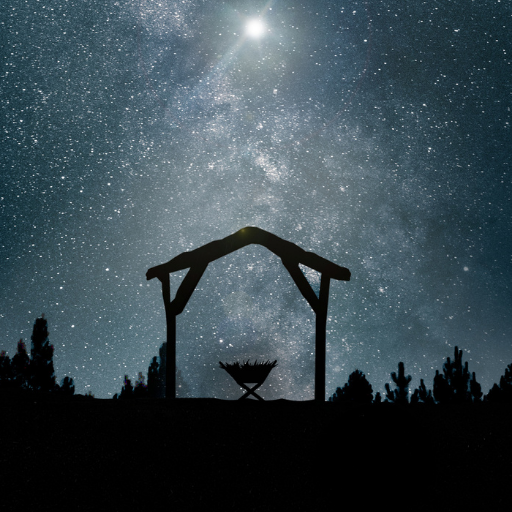 Nativity Scene Night Sky Article